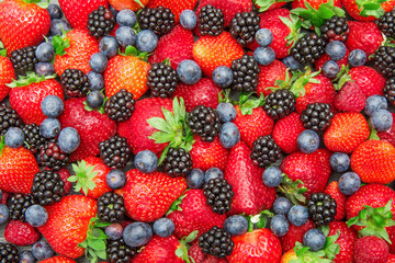 group of fresh and colored berry