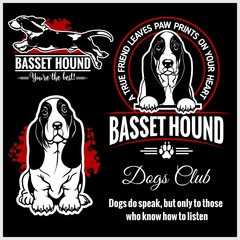 Basset Hound - vector set for t-shirt, logo and template badges