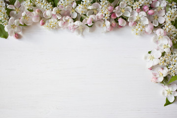 Spring background with blooming apple tree branches, bird cherry, for congratulations, text