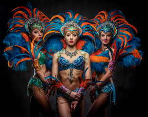 Spoed Foto op Canvas Carnaval Studio portrait of a group professional dancers female in colorful sumptuous carnival feather suits. Isolated on a dark background.