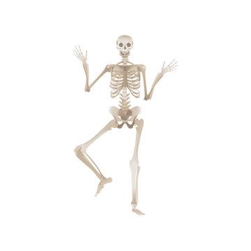 Vector flat funny human skeleton dancing icon