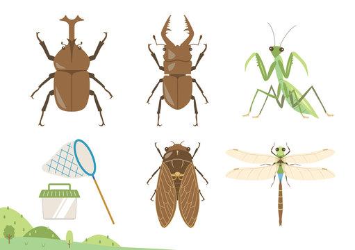夏の昆虫のイラストセット/カブトムシ、クワガタムシ、カマキリ、セミ、トンボ