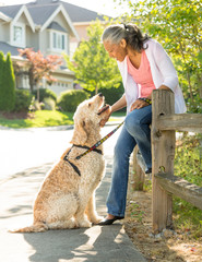 Happy, mature black African American woman outdoors with her labradoodle pet dog. Active, healthy senior lifestyles.