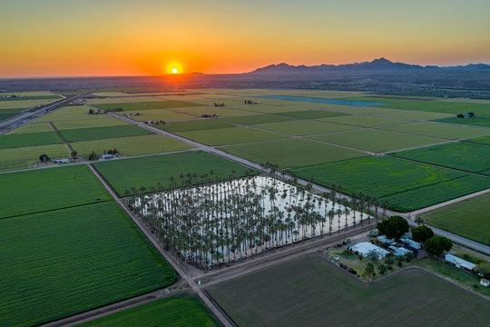 Yuma Irrigated Farmland