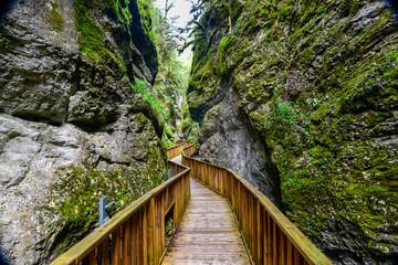 Photo sur Plexiglas Route dans la forêt foot path in the canyon