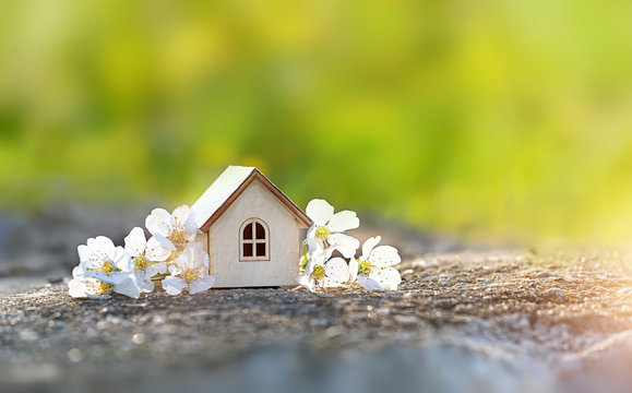 mini toy house and cherry flowers. house on spring nature background. concept of mortgage, construction, rental, using as family and property concept. copy space