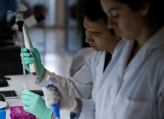 Medical researchers, members of Marina Simian's team, work in Buenos Aires