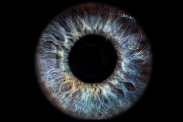 Photo sur Aluminium Iris Iris Auge blau vor schwarzem Hintergrund