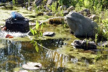 wasserspeiernder Frosch am Gartenteich