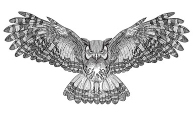 Flying owl with large wings. Dudling painting, dudling, meditation. The bird spread its wings.