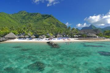 lagon de moorea polynesie française