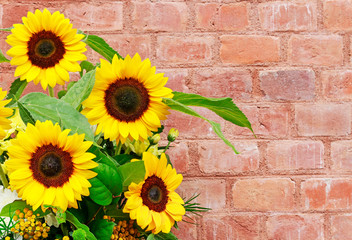 Wall Mural - Bouquet of beautiful sunflowers on brick background