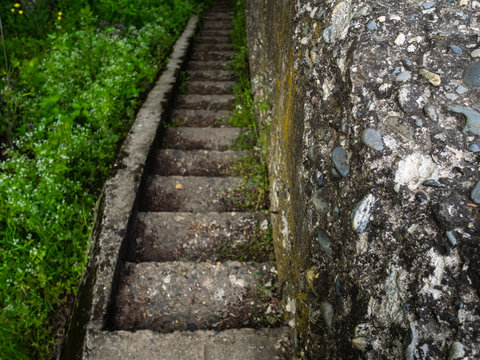 An old grey stone staircase. Woodland and a lot of green grass