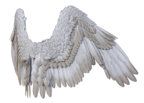 3D Rendered White Fantasy Angel Wings on White Background - 3D Illustration