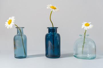 Obraz Bouquet of daisies in a glass vase - fototapety do salonu