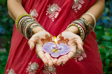 Garden Poster Lotus flower Beautiful woman in traditional Muslim Indian wedding pink sari dress hands with henna tattoo mehndi pattern jewelry and bracelets hold burning lotus candle Summer culture festival celebration concept