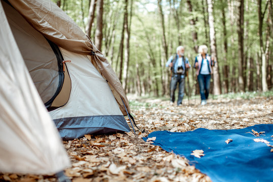 Senior couple walking near the campsite in the forest. Tent in focus. Concept of an active lifestyle on retirement