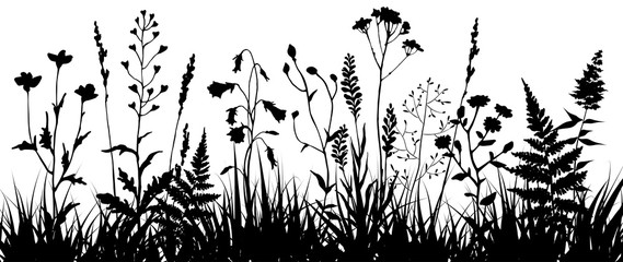 Black silhouettes of meadow wild herbs and flowers. Wildflowers. Floral background. Wild grass. Vector illustration. Fototapete