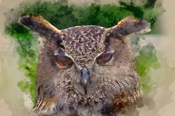 Fototapete - Watercolour painting of Stunning European eagle owl