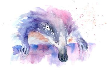 watercolor drawing of an animal - muskrat, shrew