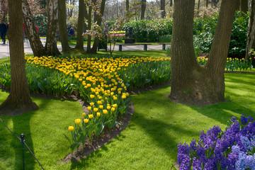 spring flowers in a Dutch garden
