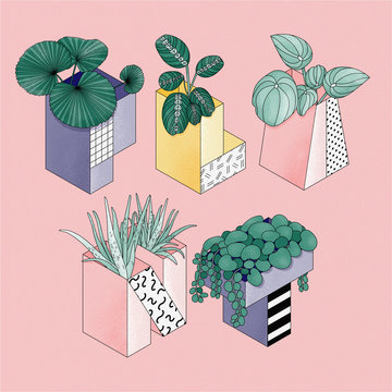 Illustration of plant pots in shapes of letters spelling plant