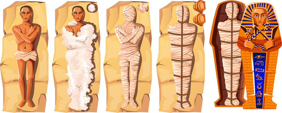 Mummy creation cartoon vector illustration. Stages of mummification process, embalming dead body, wrapping it with cloth and placing in Egyptian sarcophagus. Traditions of ancient Egypt, cult of dead