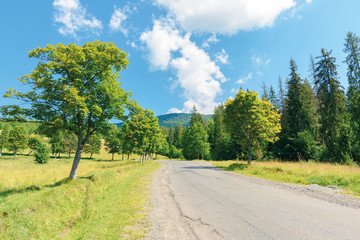 old country road in to the mountains. nature scenery with trees along the way. sunny summer landscape with clouds on a blue sky