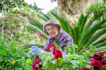 Elderly woman in checkered shirt sits in flower garden looking at the camera
