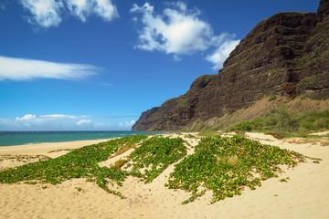 The remote beach of Polihale State Park, Kauai, Hawaii, USA