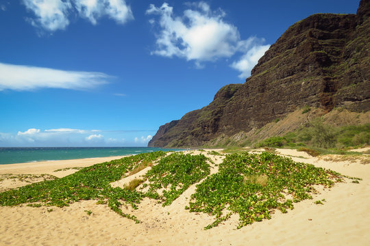 The remote beach of Polihale State Park, Kauai, Hawaii, USA