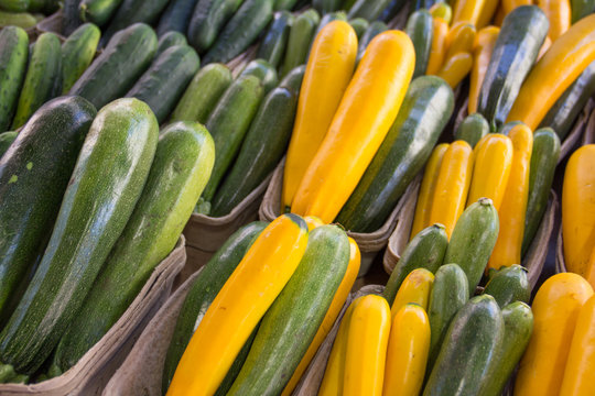 Zucchini and yellow squash in cartons at a farmers market