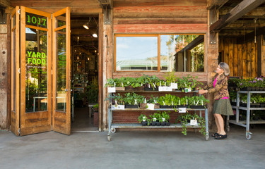 Happy, successful middle-aged woman small business owner working at garden center shop store