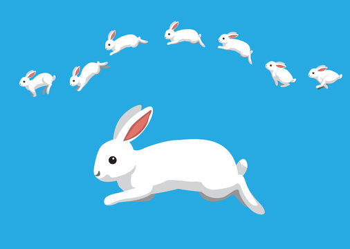 White Rabbit Jumping Motion Animation Sequence Cartoon Vector Illustration