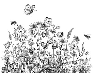 Hand Drawn Wildflowers, Bees  and Butterfly