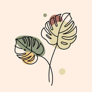 Vector illustration in minimal linear style - monstera leaves