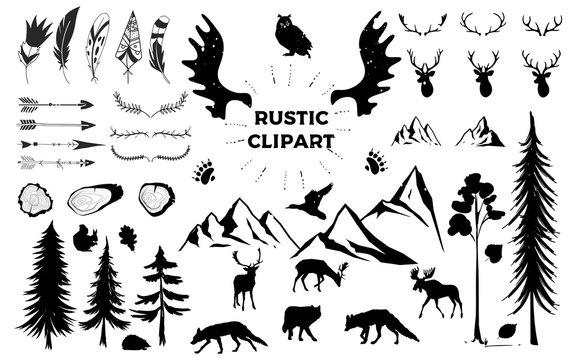 Hand drawn vintage antlers, feathers, arrows. decorative vector design set. Rustic animal, bundle, elk, deer, fox, bird. Hipster logo design element. vector tree rings