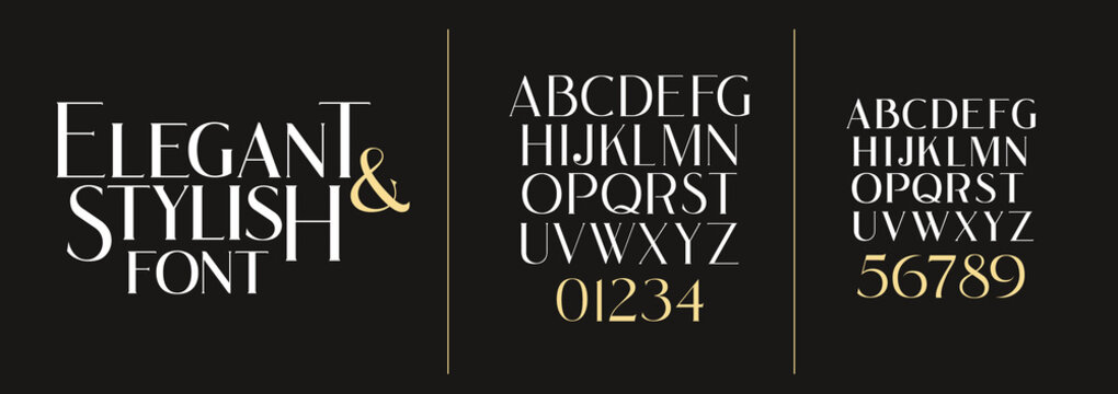 vector illustration. Stylish elegant vector composite font. set of letters english