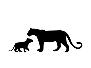 Lioness and lion cub predator black silhouette animal. Vector Illustrator.