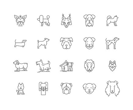 Dogs line icons, linear signs, vector set, outline concept illustration