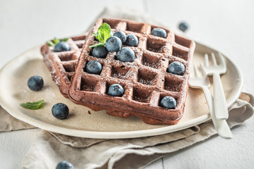 Fresh waffles made of cocoa with berry fruits