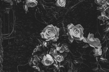 Beautiful vintage roses Is a picture of a black rose Beautiful patterns for making various media