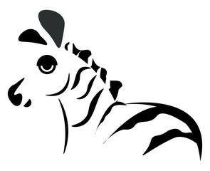 Silhouette of a zebra animal, vector or color illustration.