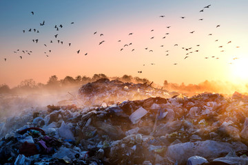 Sunrise Sun above the ocean of garbage Wall mural