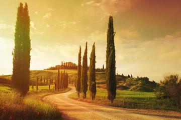 art Vintage Tuscany countryside landscape