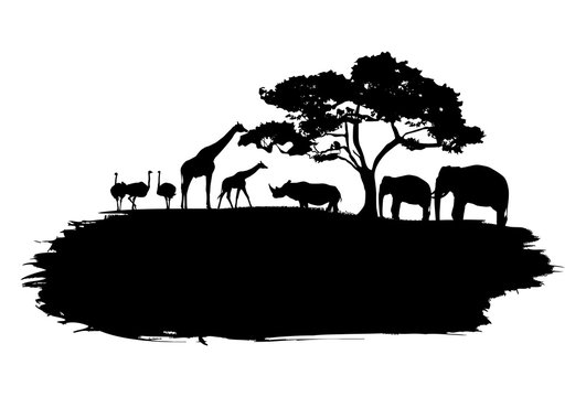 Silhouette of wildlife animals in Africa walking on splash paint, Vector