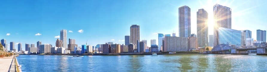 Panoramic view of winter Sumida river under blue sky in Tokyo wi Wall mural