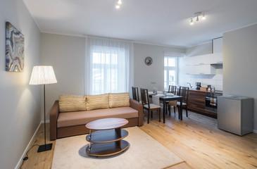 Modern studio apartment interior. Kitchen and guest room.
