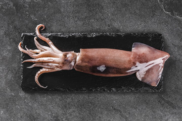 Fresh raw whole squid on slate stone on dark stone background. Seafood, top view, flat lay, copy space