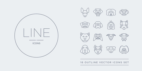 16 line vector icons set such as havanese dog, hovawart dog, husky dog, irish setter irish terrier contains italian greyhound japanese chin jindo keeshond havanese hovawart husky from dogs outline